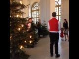 Кронпринцесса Виктория и Принцесса Эстель встретили Рождественские ели